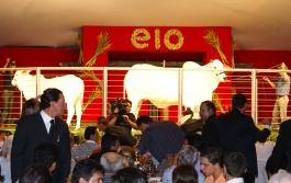 Parla FIV AJJ, o animal mais caro dos 76 anos de ExpoZebu, saiu por R$ 2,76 milhões, no leilão Elo de Raça